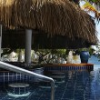 Scuba Diving Anantara Bazaruto - 7 nights