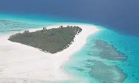 Dive Tanzania